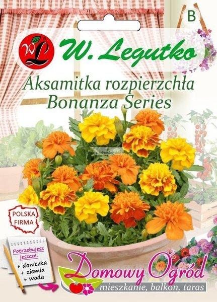 Aksamitka rozpierzchła Bonanza Series (0,5 g) - Domowy Ogród