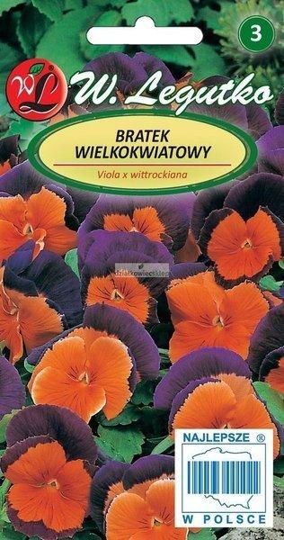 Bratek wielkokwiatowy -  Orange Violet (0,3 g)