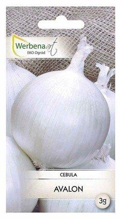 Cebula Avalon (Allium cepa L.) 3g