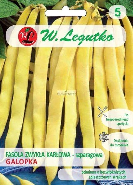 Fasola szparagowa karłowa Galopka (40 g)