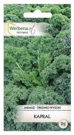Jarmuż  Kapral (Brassica oleracea L.) 2g