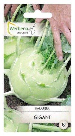 Kalarepa Gigant (Brassica oleracea L.) 1g