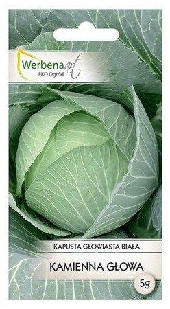 Kapusta głowiasta biała Kamienna Głowa (Brassica oleracea L.) 5g