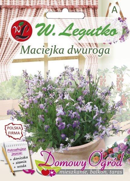 Maciejka dwuroga (2 g) - Domowy Ogród