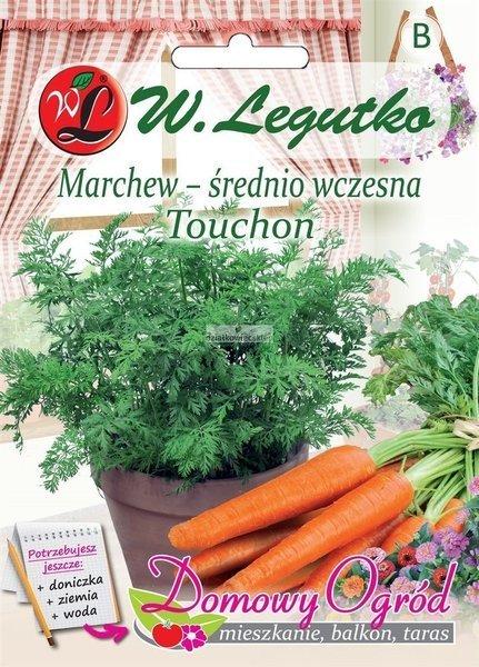 Marchew jadalna Touchon (5 g) - Domowy Ogród