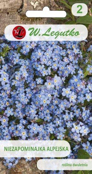 Niezapominajka alpejska - niebieska (0,3 g)