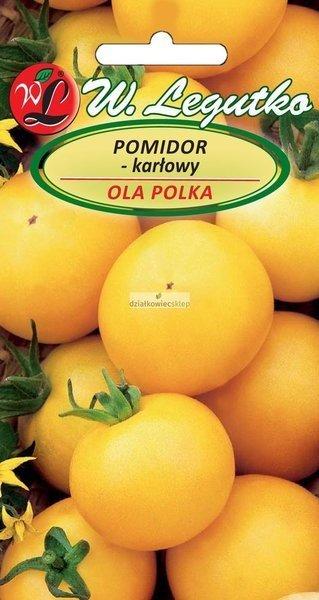 Pomidor gruntowy karłowy Ola Polka (1 g)