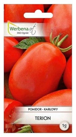 Pomidor karłowy Terion (Solanum lycopersicum L.) 1 g