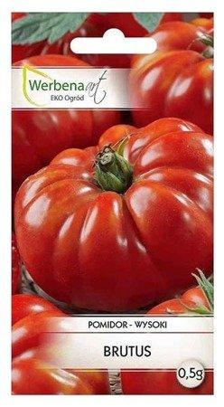 Pomidor wysoki Brutus (Solanum lycopersicum L.) 0,5g