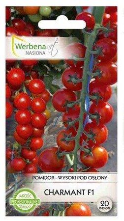 Pomidor wysoki Charmant - 20 nasion