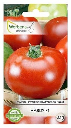 Pomidor wysoki pod osłony Hardy mieszaniec (Lycopersicon esculentum Mill) 0,1g