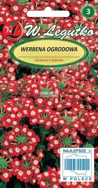Werbena ogrodowa - czerwona z białym oczkiem (0,3 g)